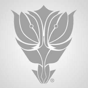 Tulip-Creativ's Profile Picture