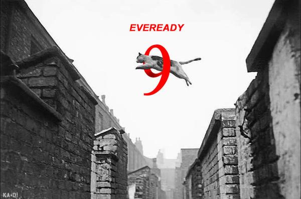 Eveready! by ka-D