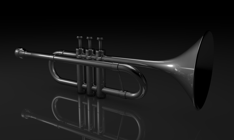 Trumpet 3D by Valadj