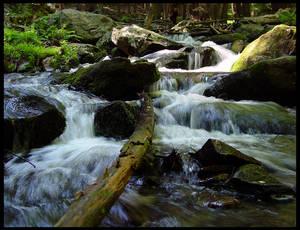 At Bushkill Falls