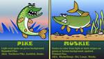 PIKE, MUSKIE ID by TallToonist