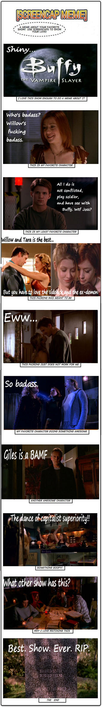 My Buffy Meme by blamethemonkey