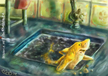 The yellow shark who lives in my sink by RaposaBranca