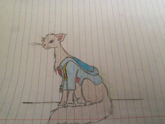 another drawing of venturian as a cat! by tacobell1810