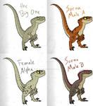 Raptors - Jurassic Park