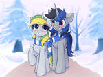 Commission (Winter love)