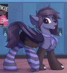YCH (Pone in socks)