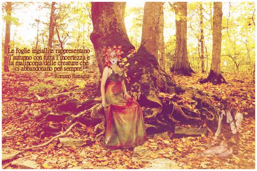 Fall - Le foglie ingiallite...