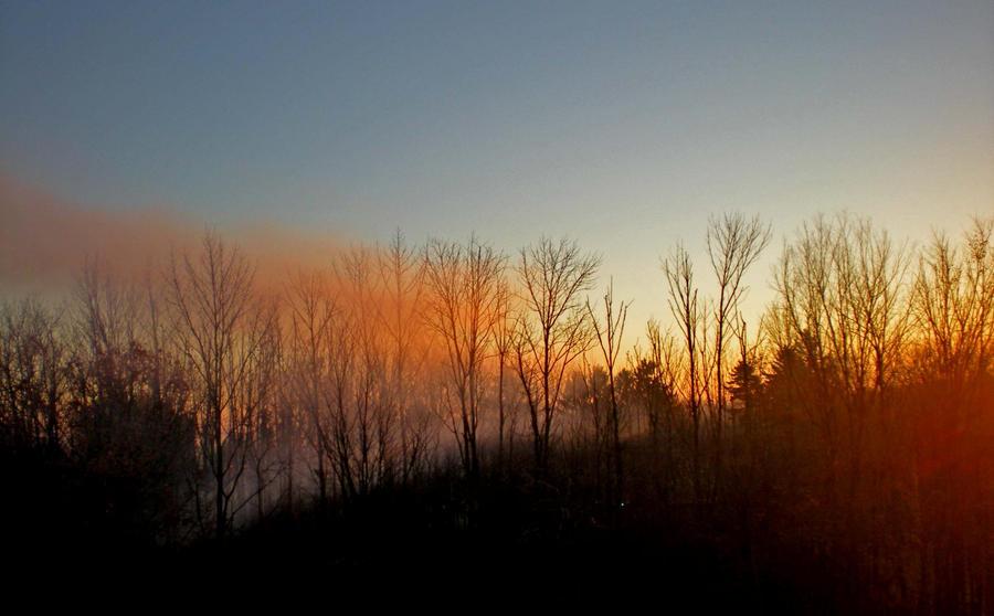 the morning haze by ChristaSheen