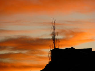 Orange Sunset2 by Grotesque-beauty