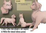 Basic Cat Character Pack