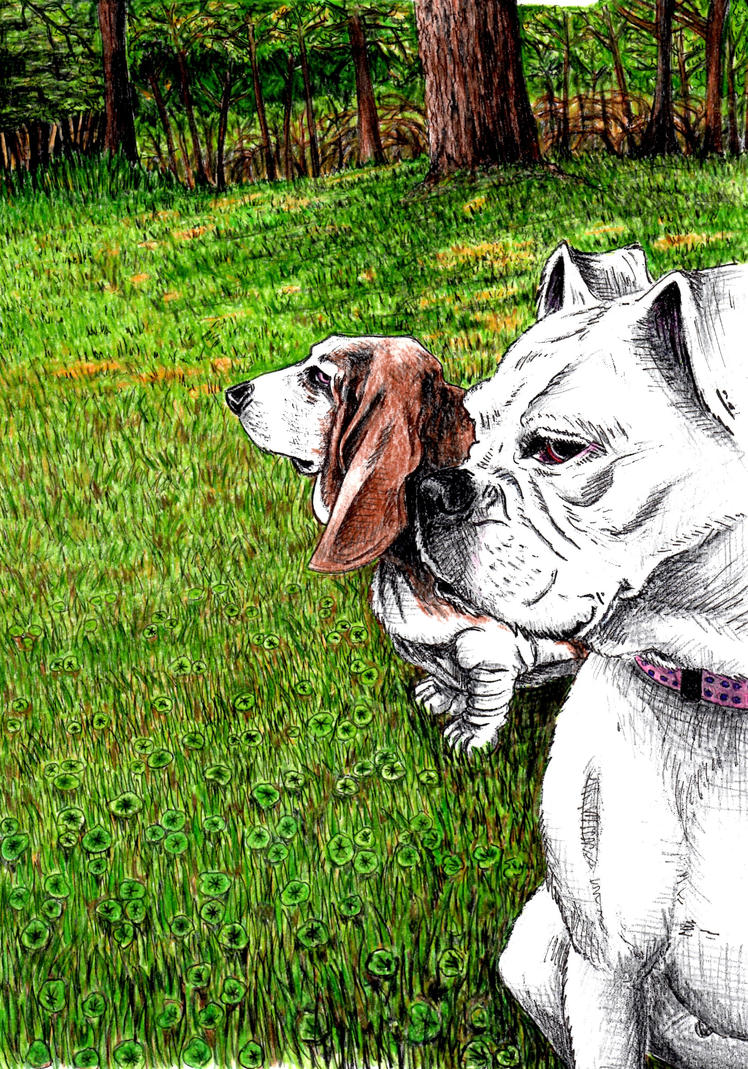 lexi_and_elsie_by_markdaniel-d6mh22k.jpg
