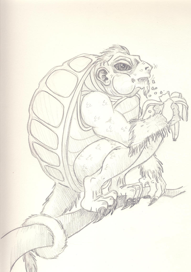 Monkey___Turtle_by_MarkDaniel.jpg