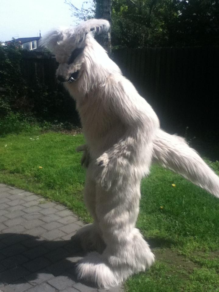 White Wolf by MonstrositiesNZ