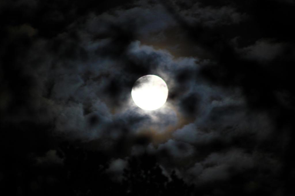 Moonlight by Syzygi