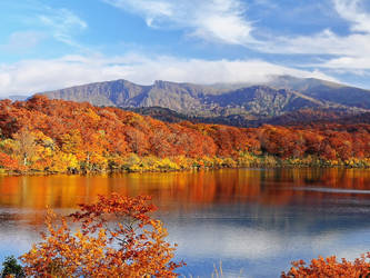 Autumn Scenery by TidebuyReviews