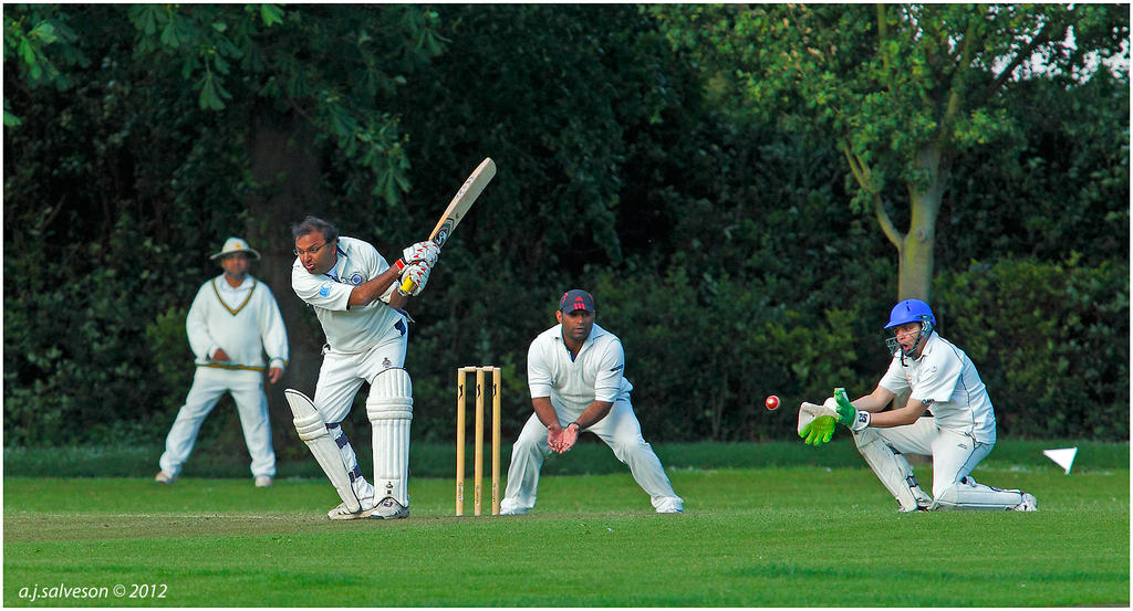 Local Cricket Match by andy-j-s ...