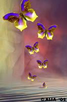 Translucent Dreams