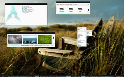 GAIA Desktop