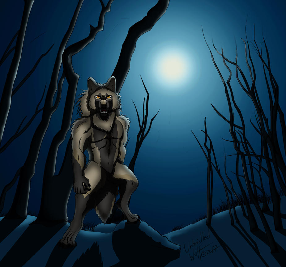 Chase Allen in the Night Forest by UnbridledWolf