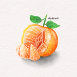 Tangerine Watercolour Study | Kira-Marie Art