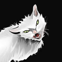 Angry White Cat by BlackPandaOps
