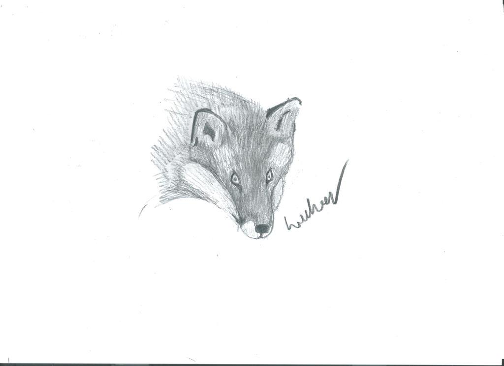 Foxy by wulwer