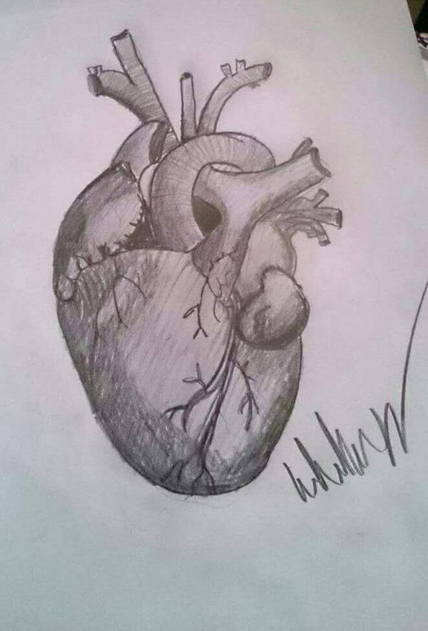 Heart #1 by wulwer