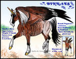 IHS Binnaes by IronHill-Stables