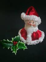 Santa Claus by RosaRubea