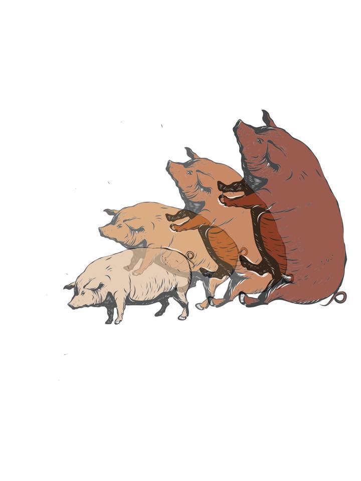 pig time by Raggatron
