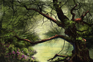 Canopy of Life by phantastes