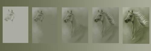 Sturdy Horse step-by-step