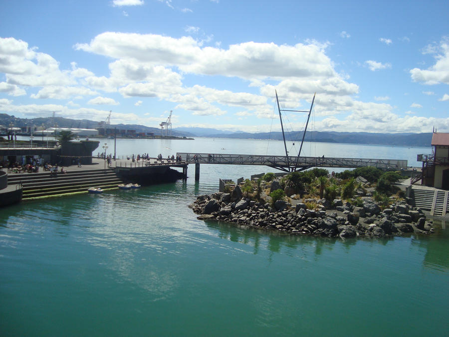 Wellington Harbour by shazda