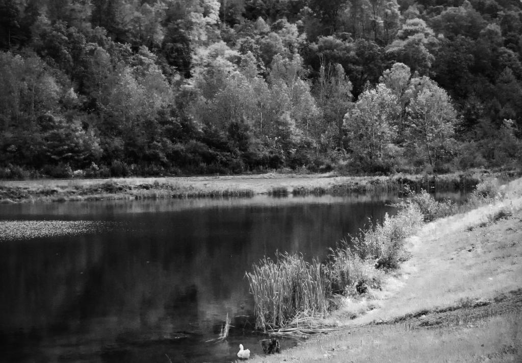 Highsplint Lake 3 BW by billndrsn