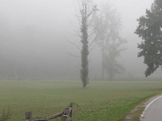 foggy by billndrsn