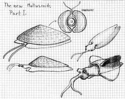 The new ''Molluscoids'' - Part I.