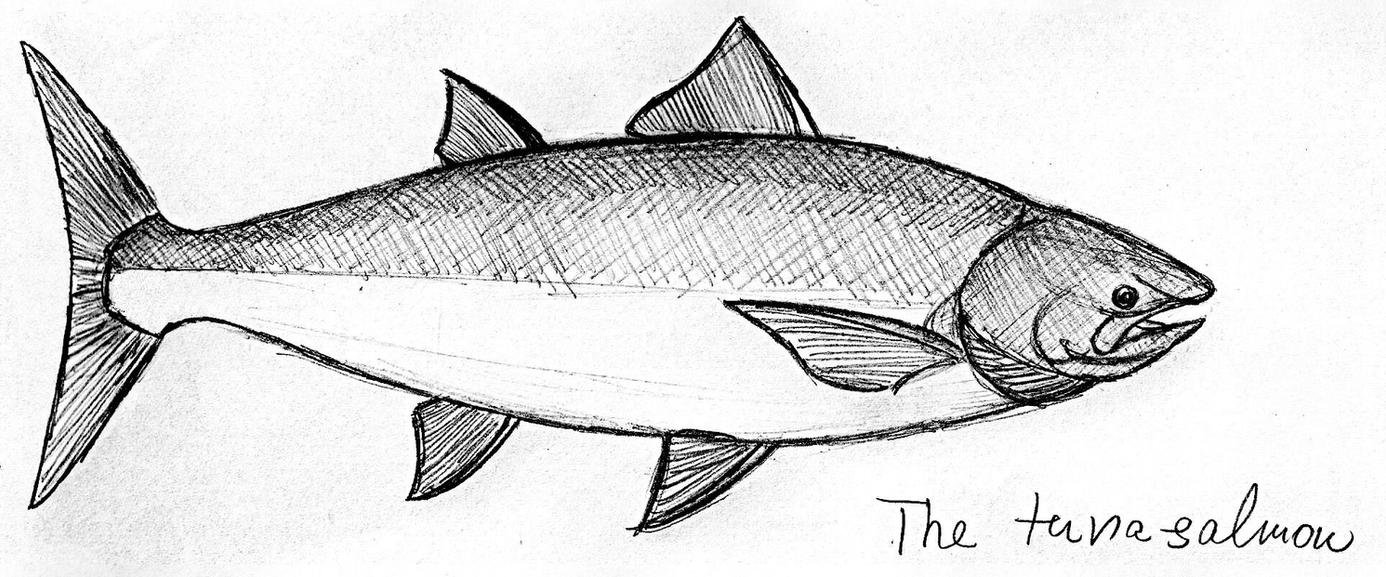 The \'\'tuna-salmon\'\' by PeteriDish on DeviantArt