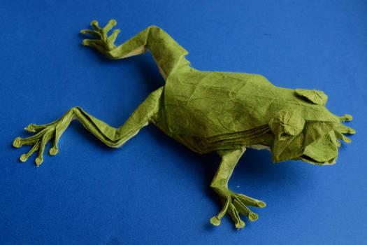Tree Frog 3.6