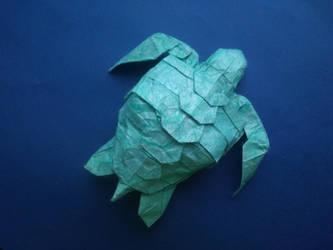 sea turtle by PeteriDish