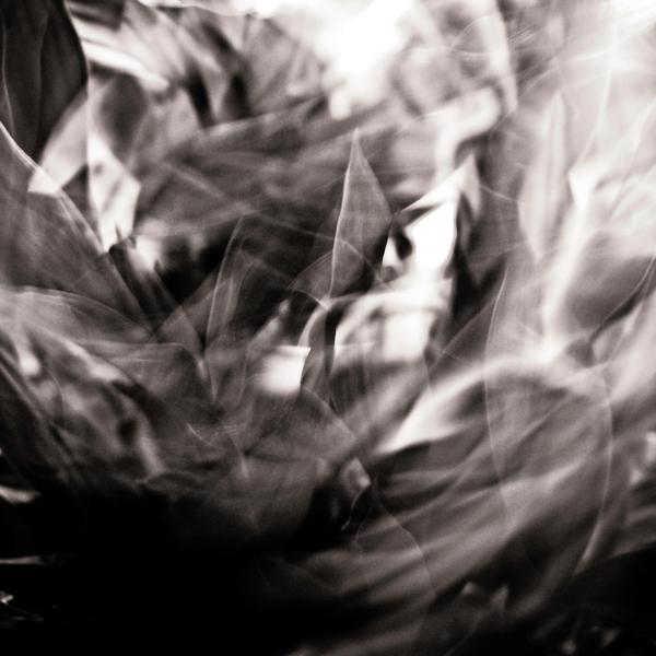 Morpheus Unbound by S4SH4X