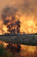 Wildfire 1 by WilliamsMind