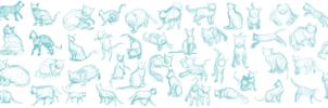Cat Gestures 8/8/13