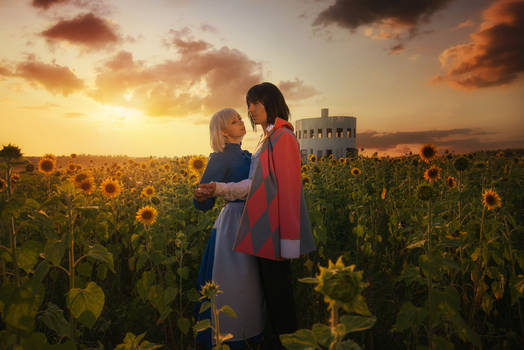 Howl's moving castle: Field of flowers