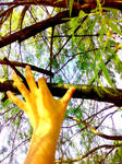 Touching the Nature