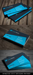 Blue Creative Business Card Template by thearslan