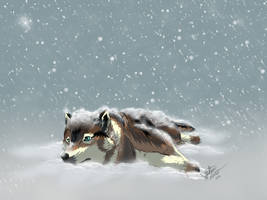 Blizzard by BluEgypt
