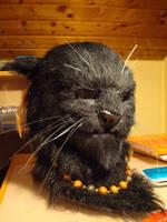 LARP cat by kleinerFreak