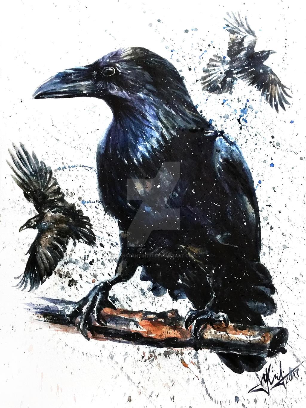 Raven by KONSTANTIN737