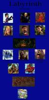 My Labyrinth Cast